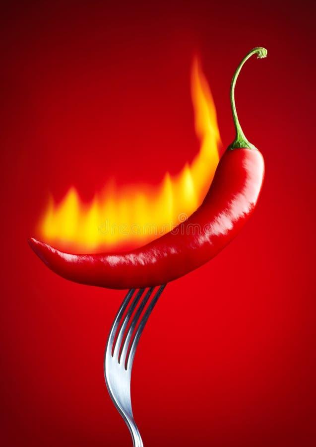 Płonący czerwonego chili pieprz obraz stock