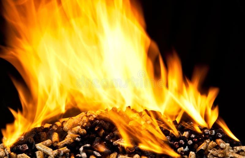 Płonący drewniany wyrko zdjęcie royalty free