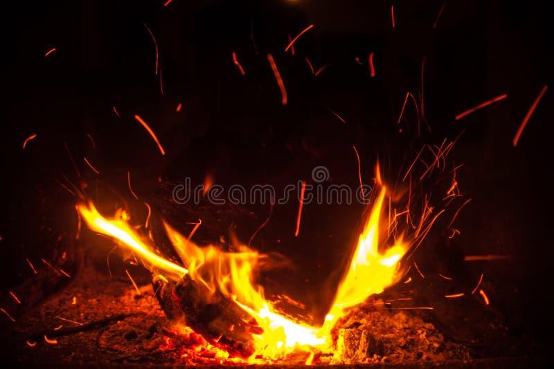 Płonący drewno płomienie obraz stock