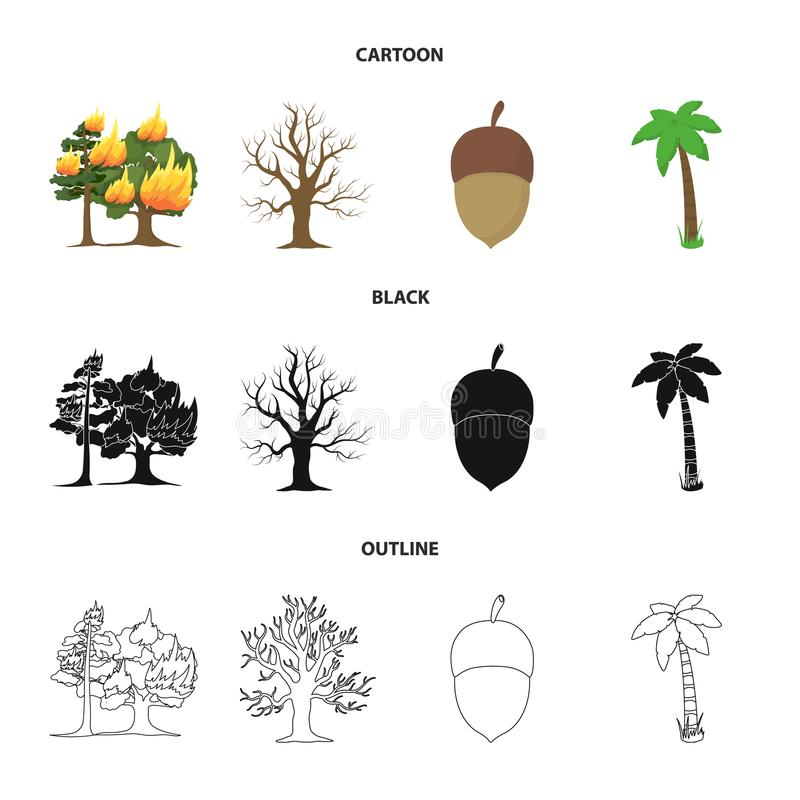 Płonący drzewo, palma, acorn, suchy drzewo Las ustalone inkasowe ikony w kreskówce, czerń, konturu symbolu stylowy wektorowy zapa ilustracji