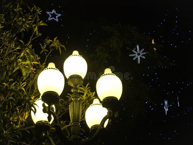 Płonący lampion przeciw tłu wysocy zieleni drzewa z dekoracyjnymi świecącymi gwiazdami zdjęcie royalty free