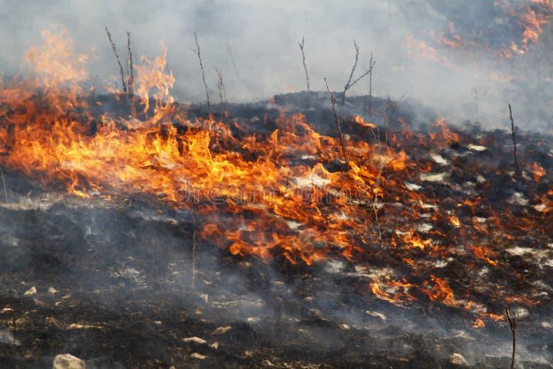 Płonący obszar trawiasty w krzemieni wzgórzach Kansas zdjęcia royalty free