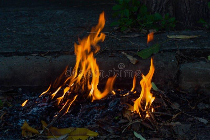 Płonący pobocze śmieci zdjęcie royalty free