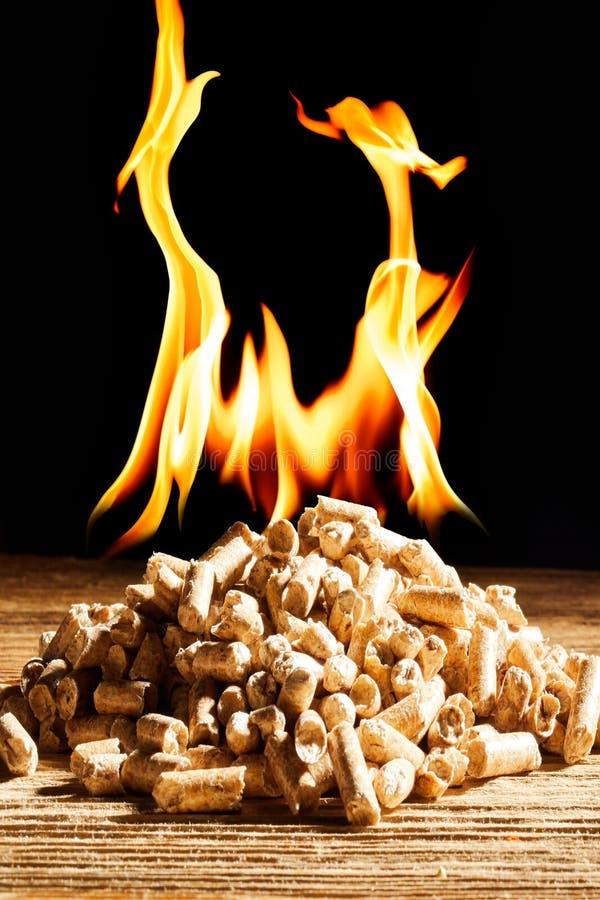 Płonący stos naturalni drewniani wyrka fotografia royalty free