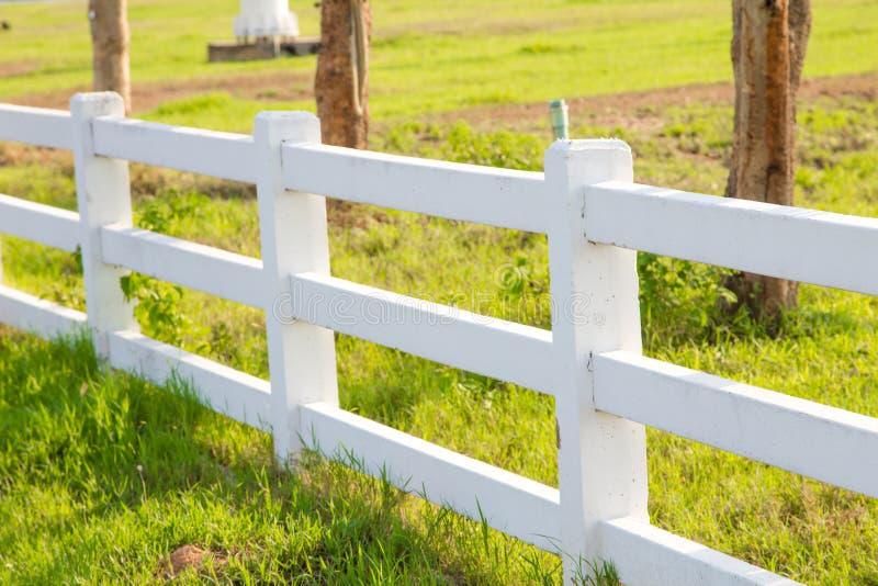 płotem płotu white zdjęcie stock