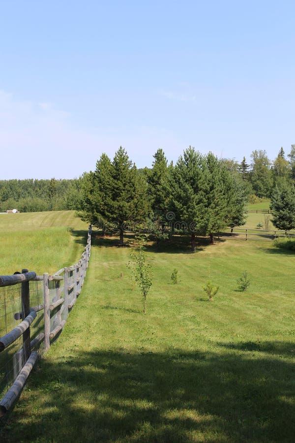 Płotowa linia na Północnym Kanadyjskim areale fotografia royalty free