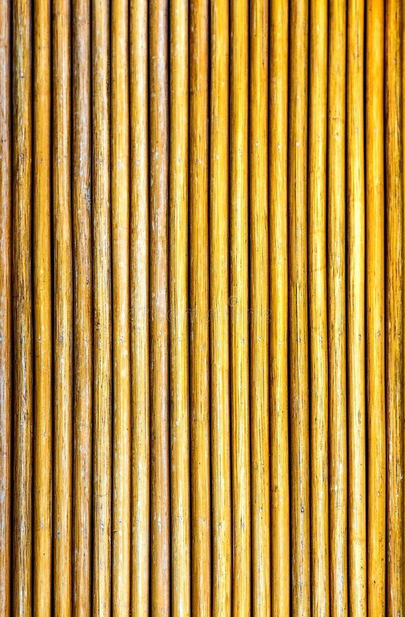 płotowi lata łąkowi słoneczniki drewniane fotografia royalty free