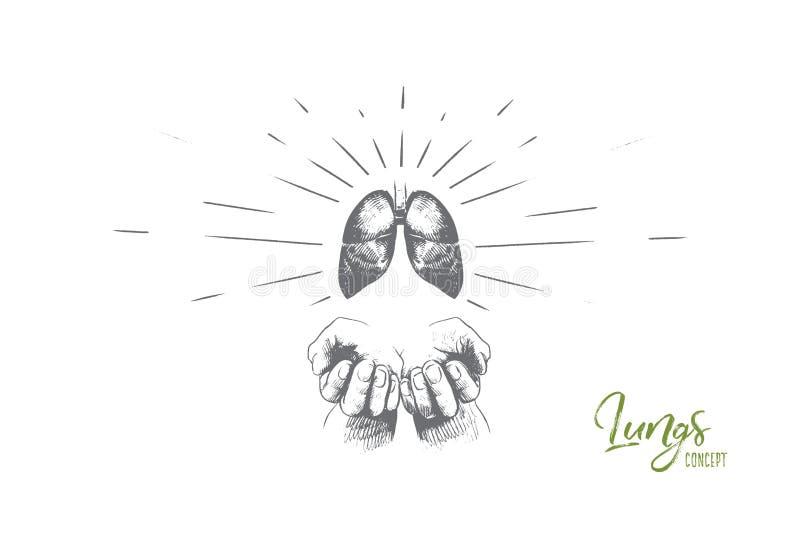 Płuca pojęcie Ręka rysujący odosobniony wektor ilustracji