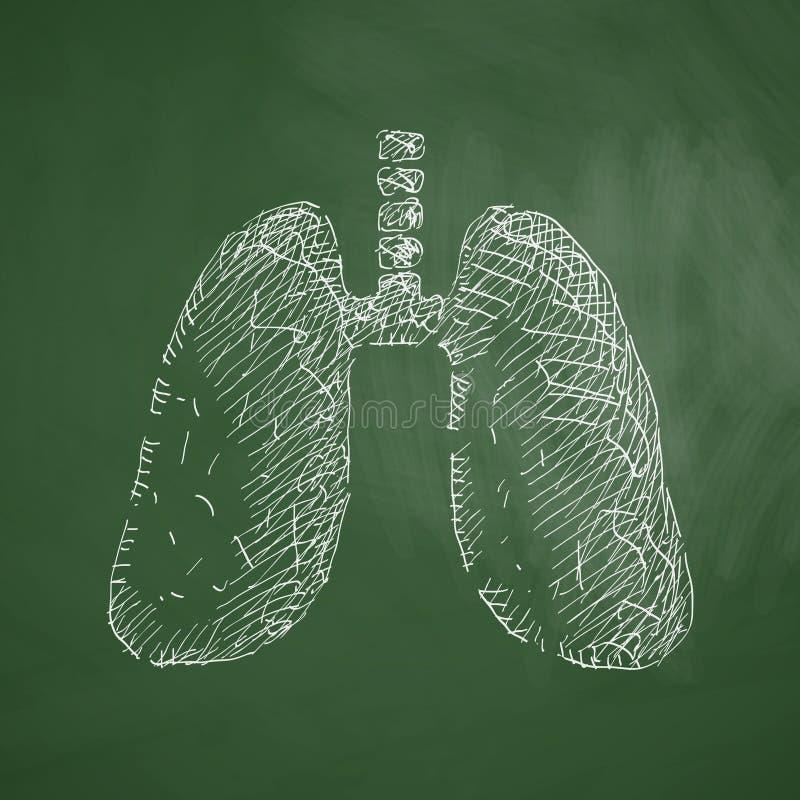 Płuco ikona ilustracja wektor