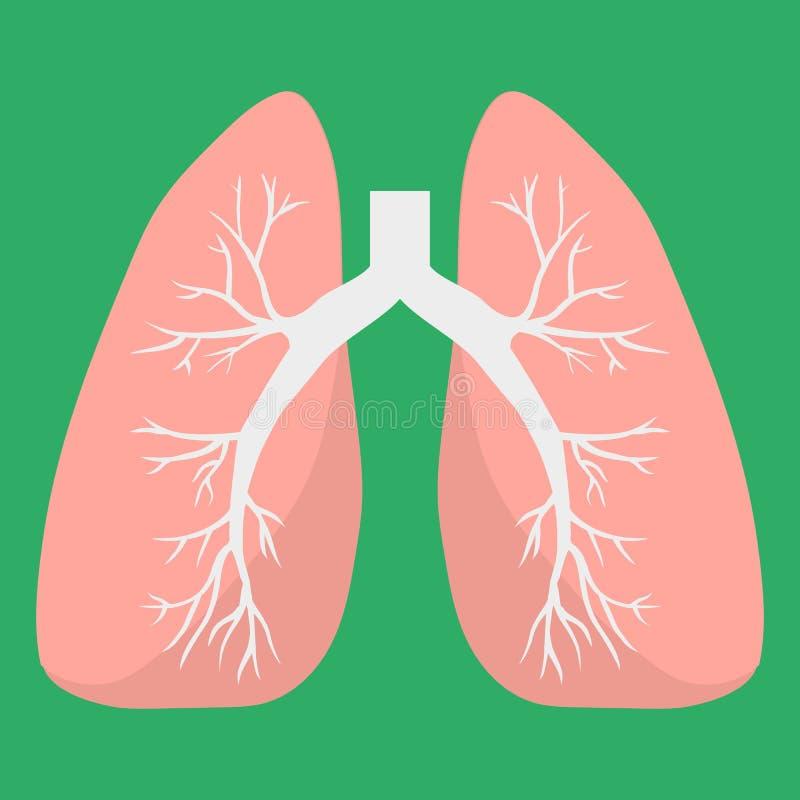 Płuco ikona Ludzki wewnętrzny organ Medyczna wektorowa ikona Anatomii pojęcie Opieka zdrowotna Mieszkanie styl ilustracja wektor