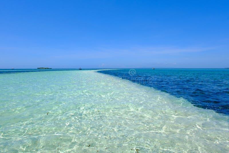 Płytka woda w dziewiczej wyspie Bohol fotografia royalty free