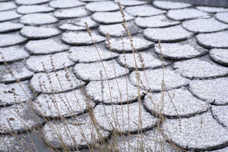 Płytki dachowe Zimowy dach, tło z śniegiem fotografia royalty free