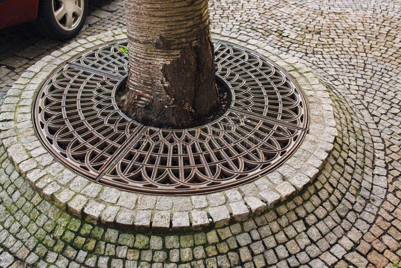 Płytki i drzewo obrazy royalty free