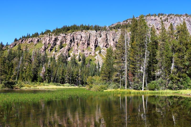 Płytki spokojny błękitny Mamutowy jezioro wśród sosna lasów i gór zdjęcia stock