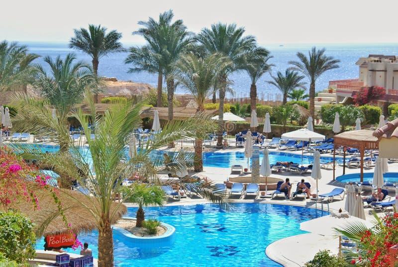 Pływacki basen Hilton rekinów Podpalany hotel zdjęcia royalty free