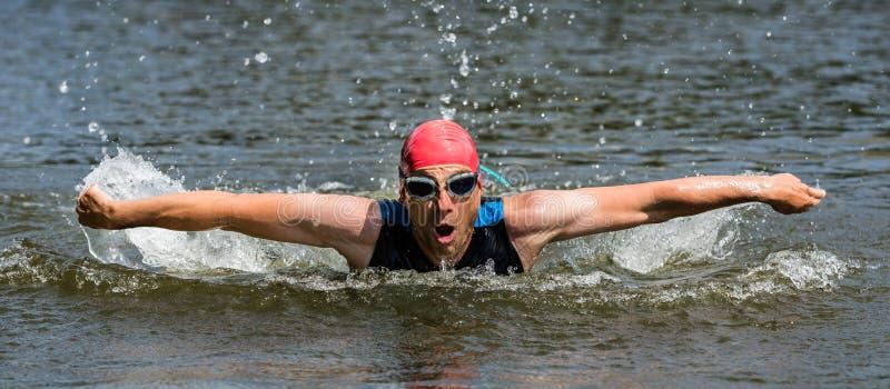 Pływaczka w motylim dopłynięciu zdjęcie royalty free