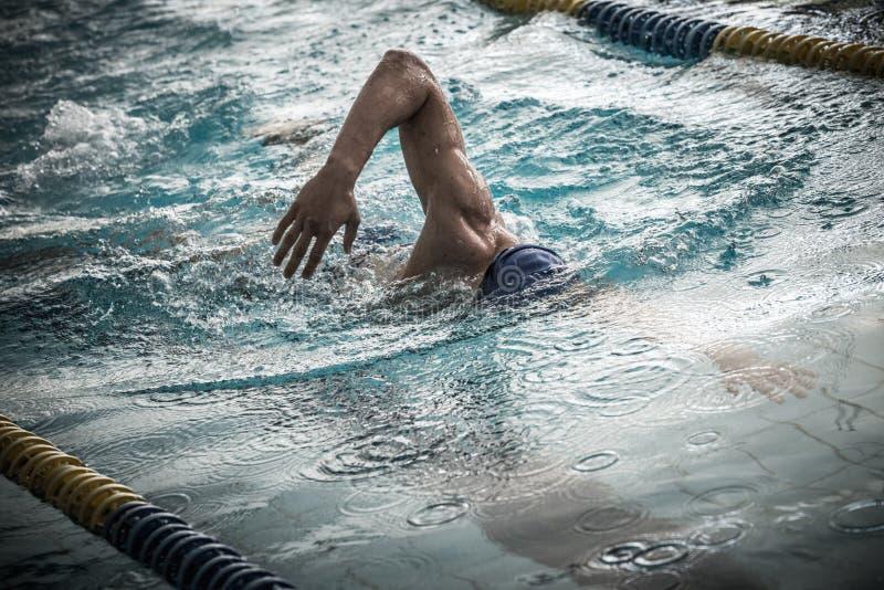 Pływaczka w pływackim basenie fotografia stock