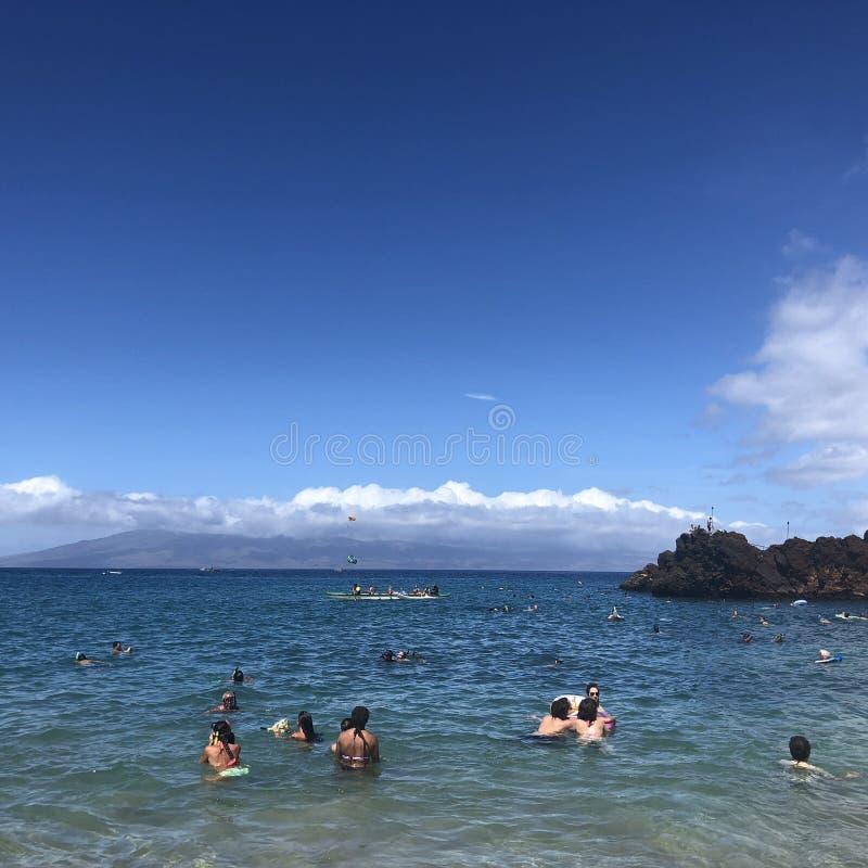 Pływaczki przy Kaanapali plażą na Maui zdjęcia stock