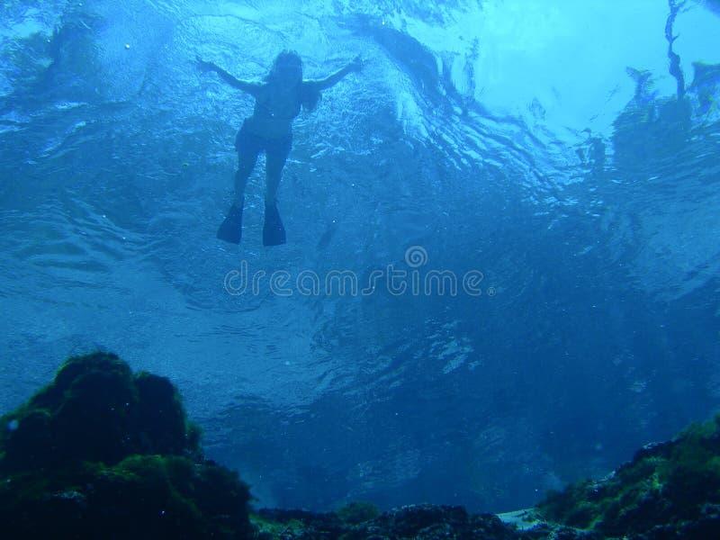pływak powierzchniowe zdjęcia royalty free