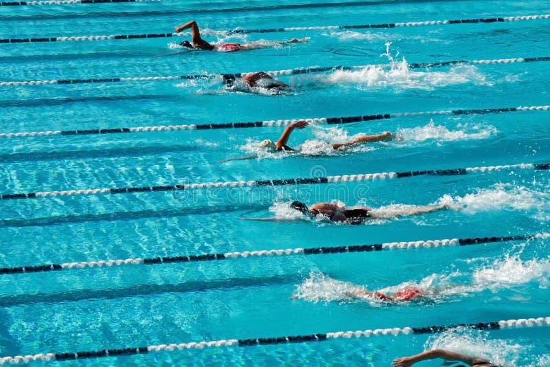 pływanie konkurencyjny zdjęcie stock