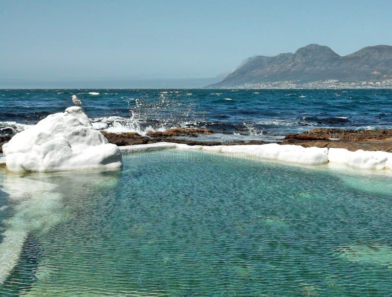 Pływowy basenu frajer obraz stock