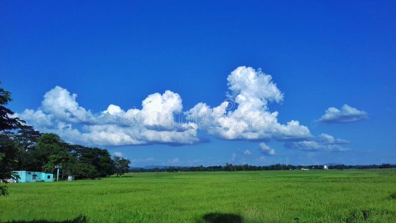 P.C. Atikur Rahman. Location : Fatikchari , chittagong, Bangladesh royalty free stock photography
