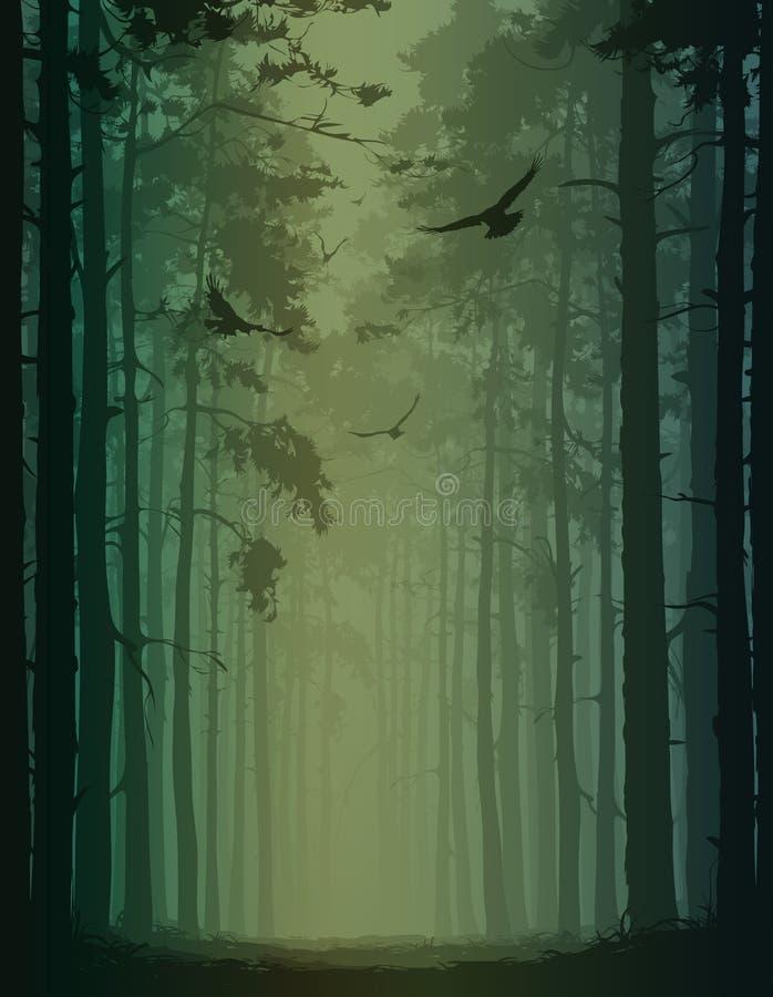 P?jaros en el bosque libre illustration