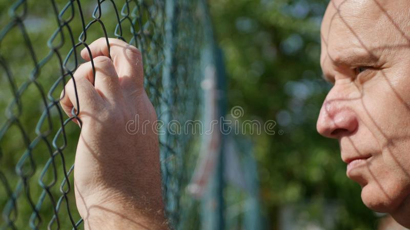 Sad and Upset Person Looking From Behind a Metallic Fence royalty free stock image