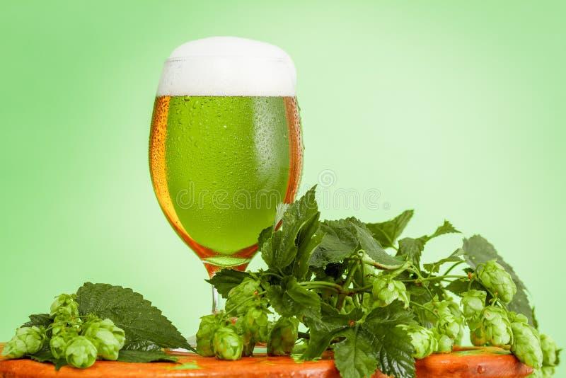 P?? kwarty piwo z sk?adnikami dla domowej roboty piwa na zieleni fotografia stock