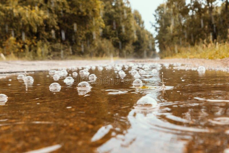 P?l med bubblor p? v?gen under regnet arkivbilder