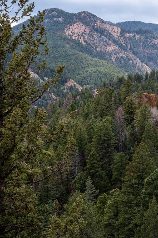P??nocne Cheyenne jaru kanonu Colorado wiosny zdjęcia stock