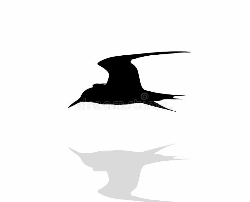 p?ssaros ilustração do vetor