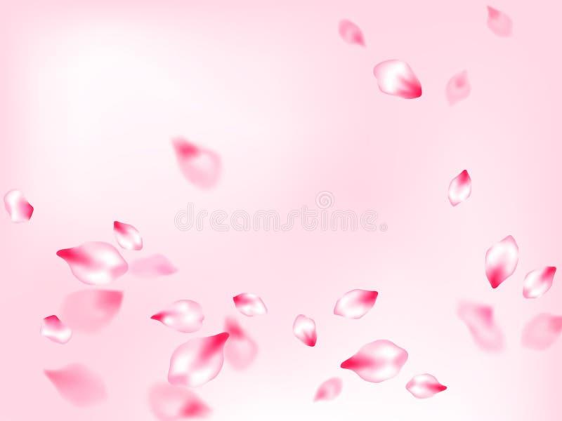 P?talos que vuelan del rosa japon?s de la flor de cerezo stock de ilustración