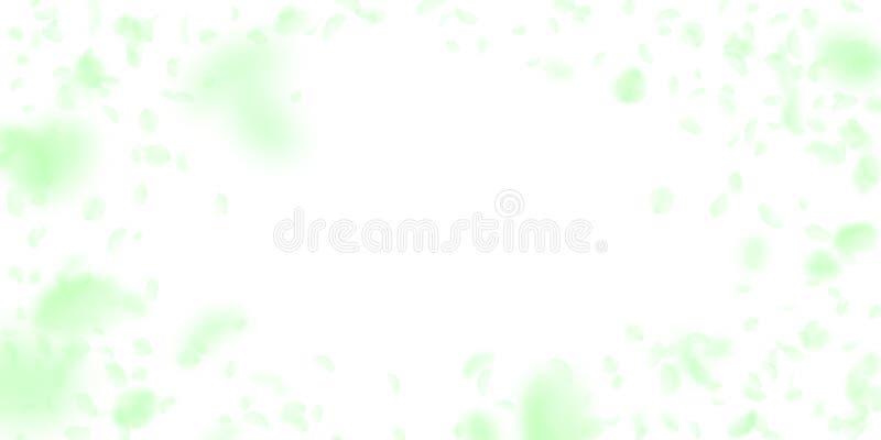 P?talos verdes de la flor que caen abajo Animadamente rom?ntico stock de ilustración