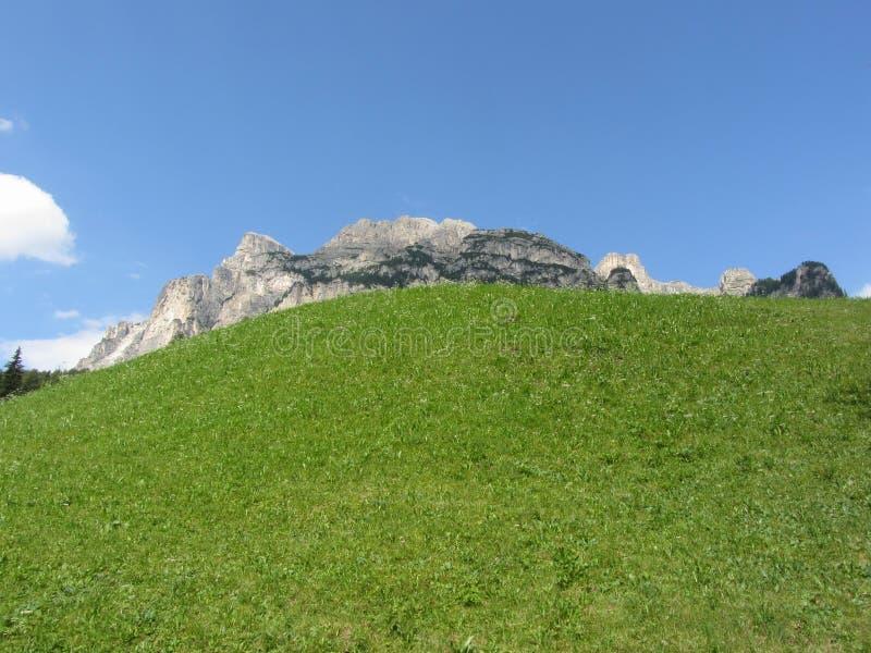 P?turage alpin contre les dolomites italiennes ? l'?t? Le Tyrol du sud, Bolzano, Italie images libres de droits