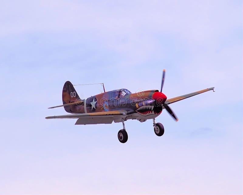 P40 Warhawk som in kommer för en landning royaltyfri bild