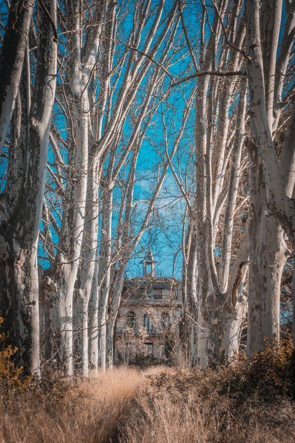 Pałac Versallesco porzucał zdjęcie stock