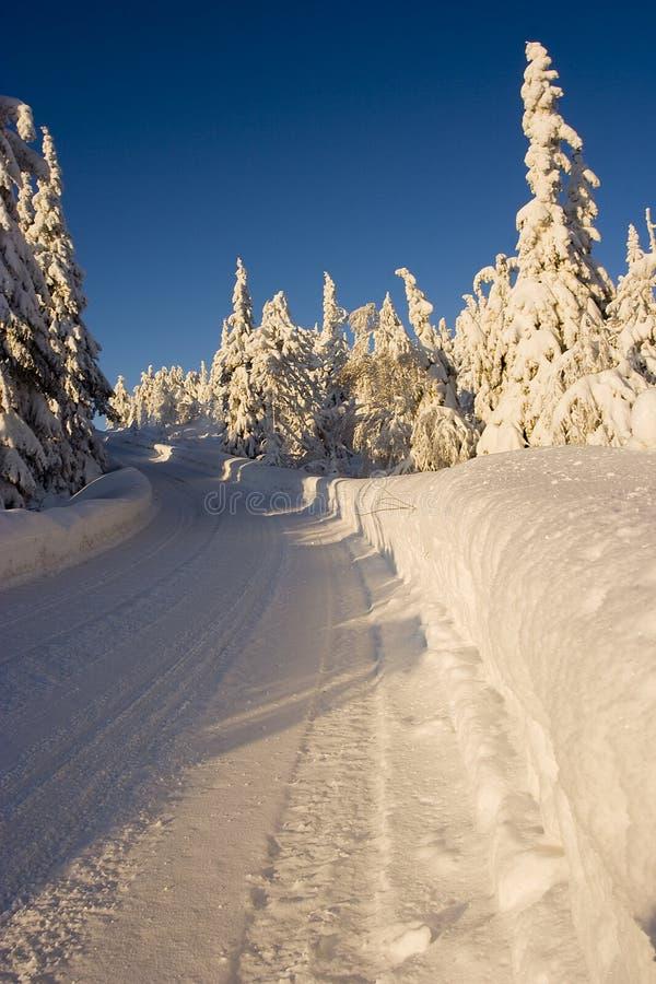 País das maravilhas do inverno de Lapland imagem de stock