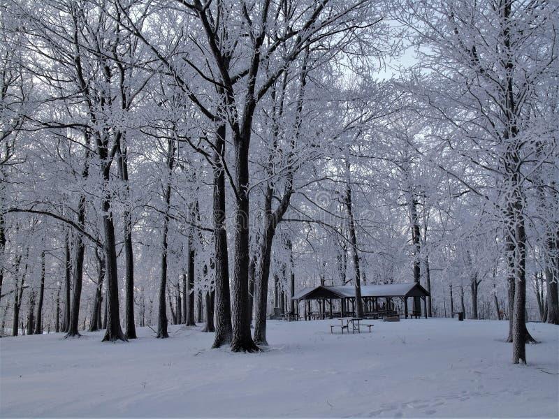 País das maravilhas do inverno em Brigham County Park imagem de stock royalty free