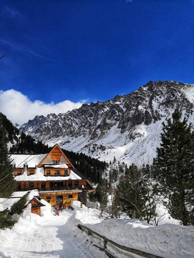País das maravilhas do inverno em Eslováquia foto de stock