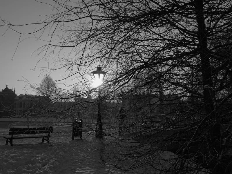 País das maravilhas do inverno em Leiden fotos de stock royalty free