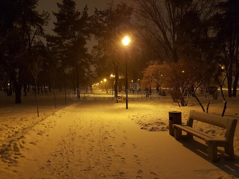 País das maravilhas do inverno no parque do Kiew bonito foto de stock royalty free