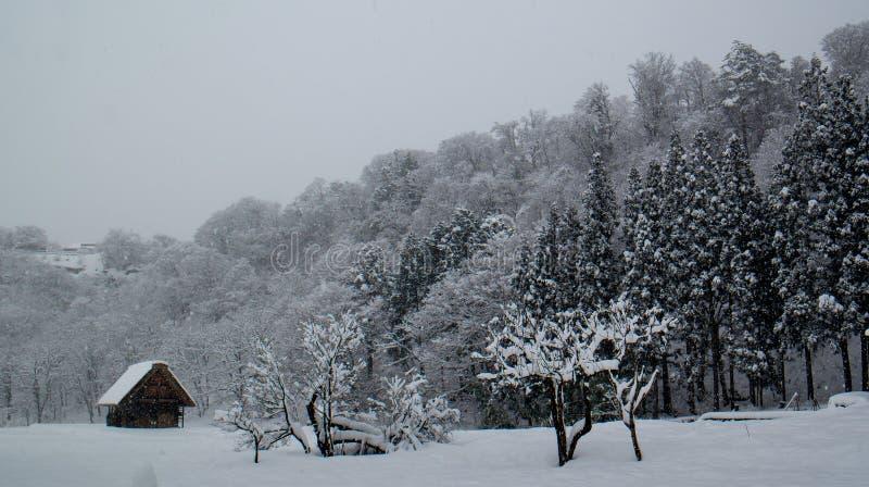 País de la nieve imagenes de archivo
