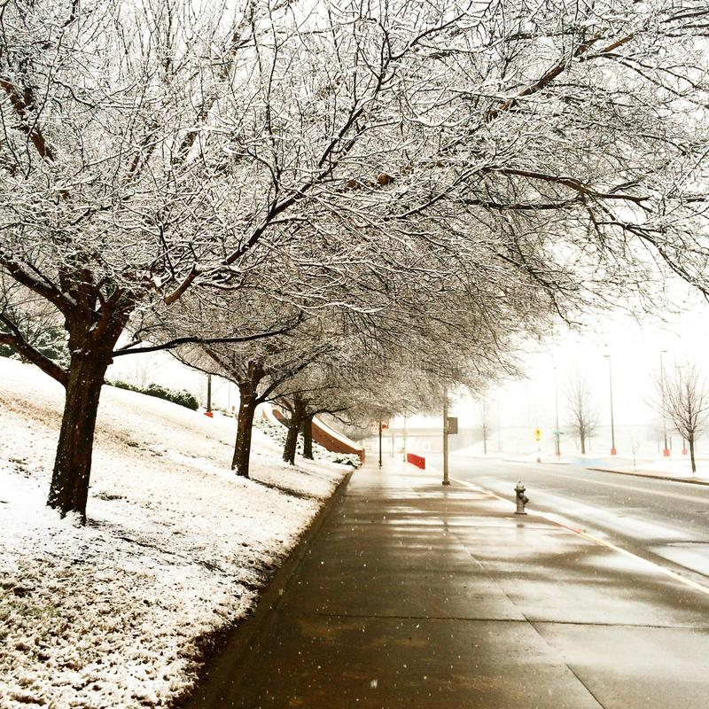 País de las maravillas del invierno fotografía de archivo libre de regalías