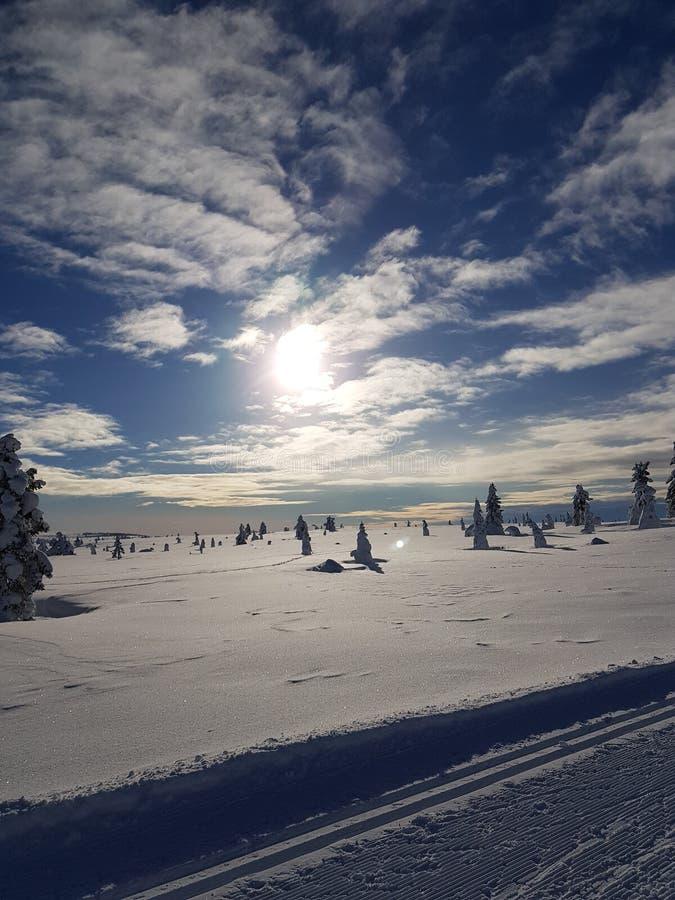 País de las maravillas del invierno día soleado en el rastro del esquí del campo a través fotografía de archivo libre de regalías