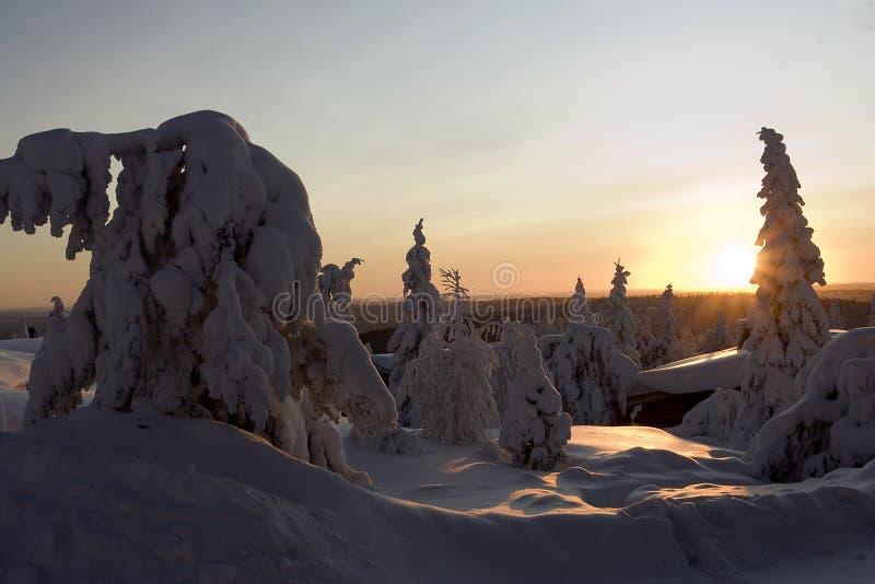 País de las maravillas del invierno de Laponia fotos de archivo libres de regalías