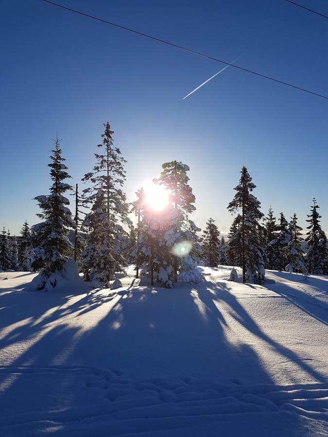 País de las maravillas del invierno mañana soleada y un cielo azul hermoso imágenes de archivo libres de regalías