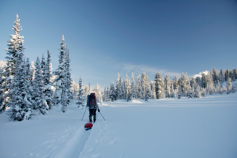 País de las maravillas y esquiador del invierno en esquí-pista fotos de archivo libres de regalías