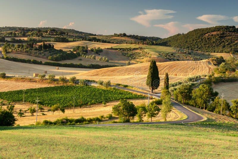 País perto de Pienza, Italy de Tuscan foto de stock