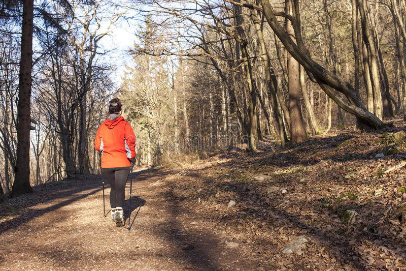 País transversal de passeio do Nordic Sportive da mulher imagem de stock